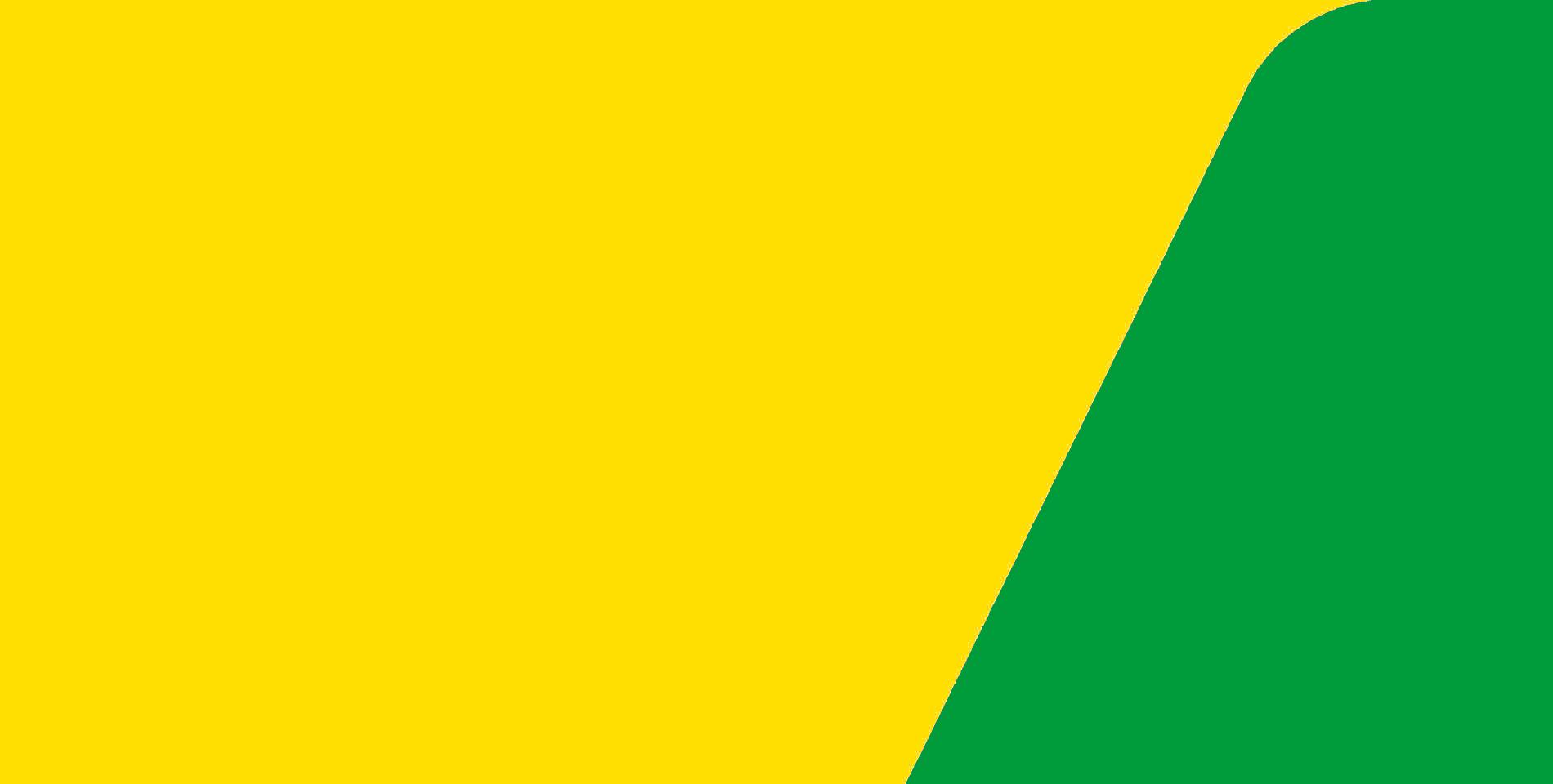 بی جی برازیل